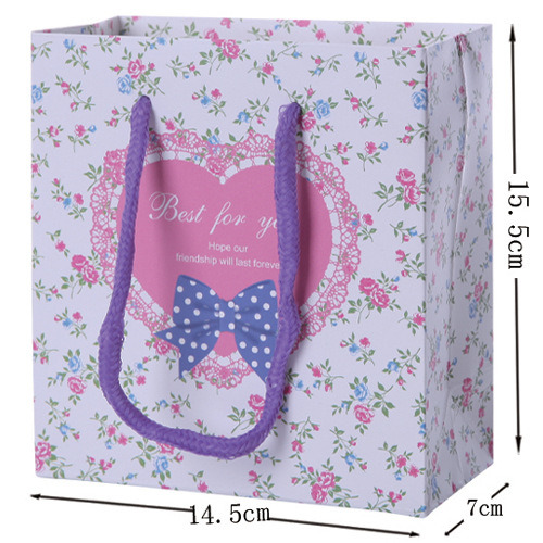 Hot Sale Custom Printed Fashion New Design Paper Package Bag